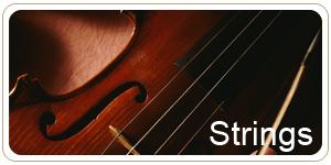 Courses_Botton_Strings_s